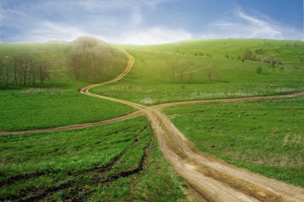 green meadow with lazy dirt road winding through