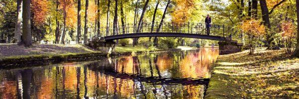 girl standing on bridge in fall